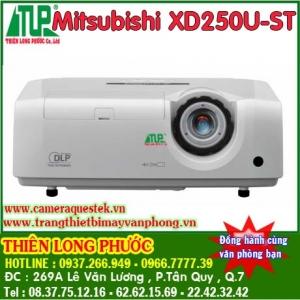 Mitsubishi_XD250_522d2b24608f4